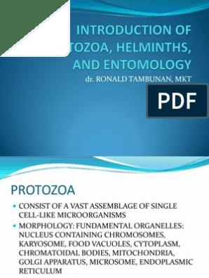 8 legjobb parazita gyógyszer - Dipyllobothriasis opisthorchiasis