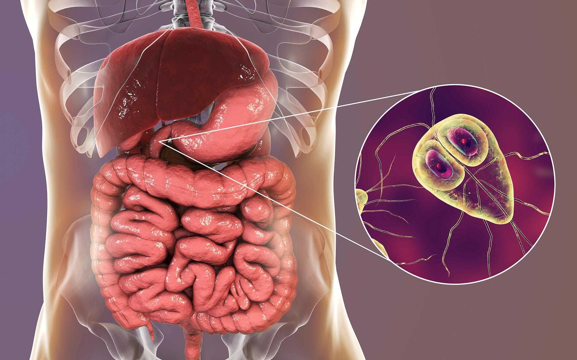A Giardia Ascaris tünetei