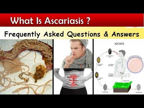 Ascaris fertőzés és megelőzés módjai
