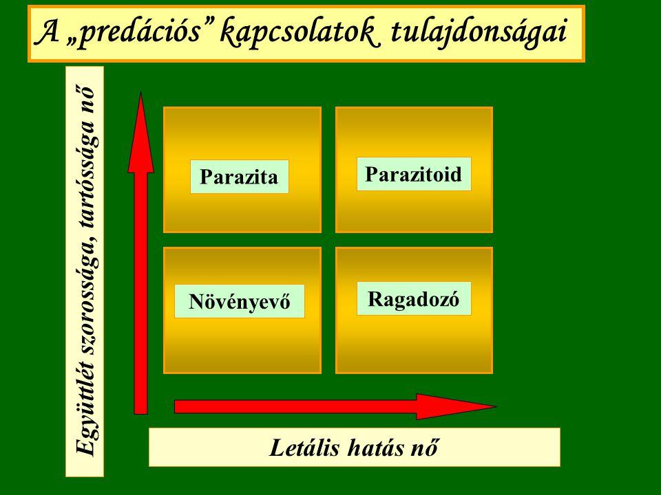 ragadozók paraziták és egyéb kapcsolatok