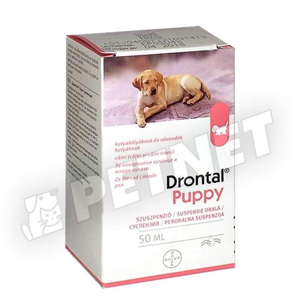 féreghajtó tabletta kutyáknak gyógyszertárban