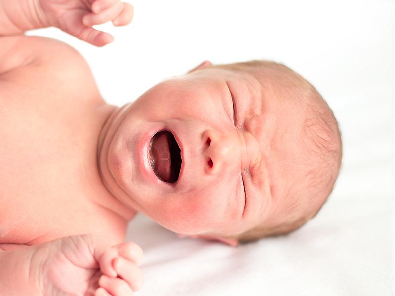 Gyermekek és felnőttek férgek elleni gyógyszerei - andrea-design.hu