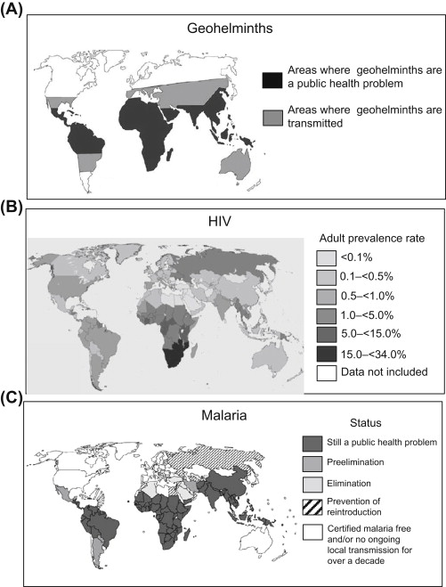 parazita ellenőrzés az emberi testben gyógyszerek ízű szájszag