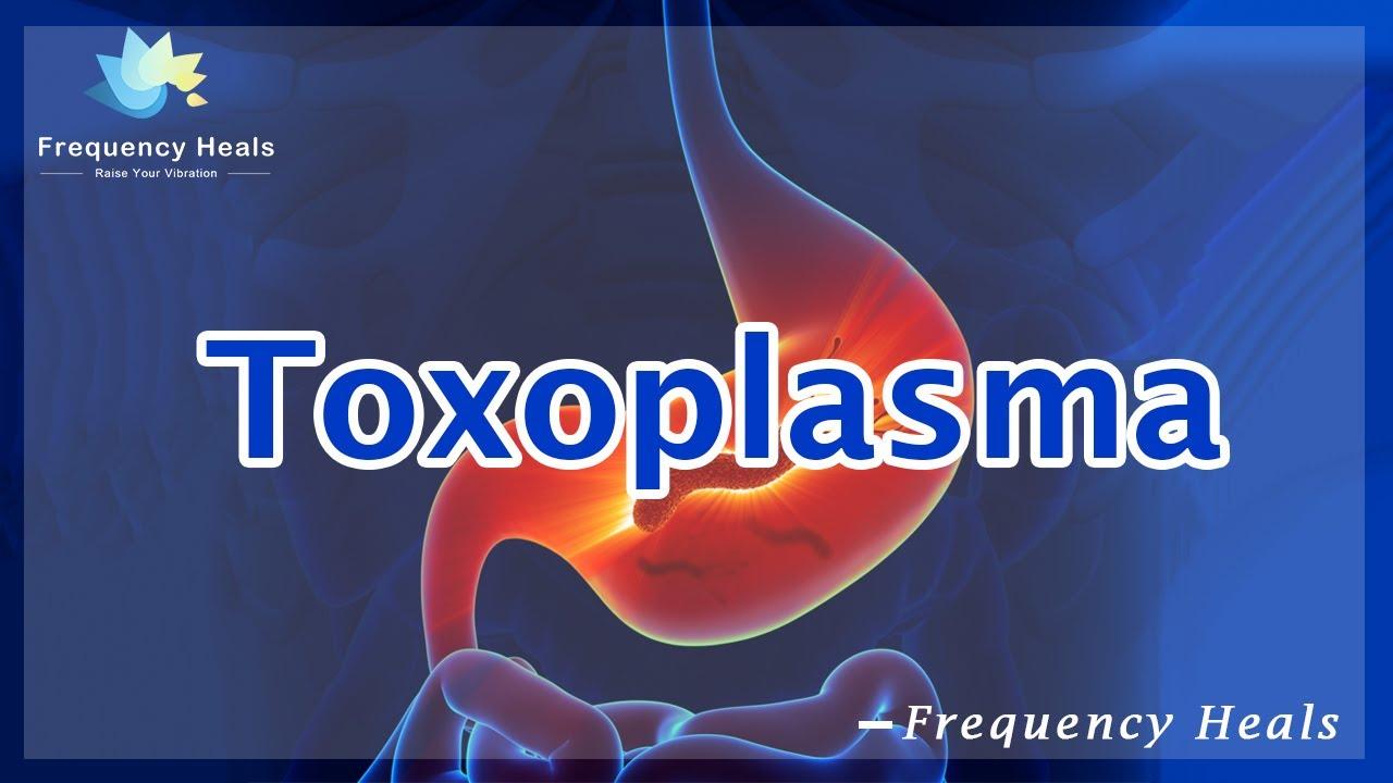 halitox szájszag orvoslás vélemények