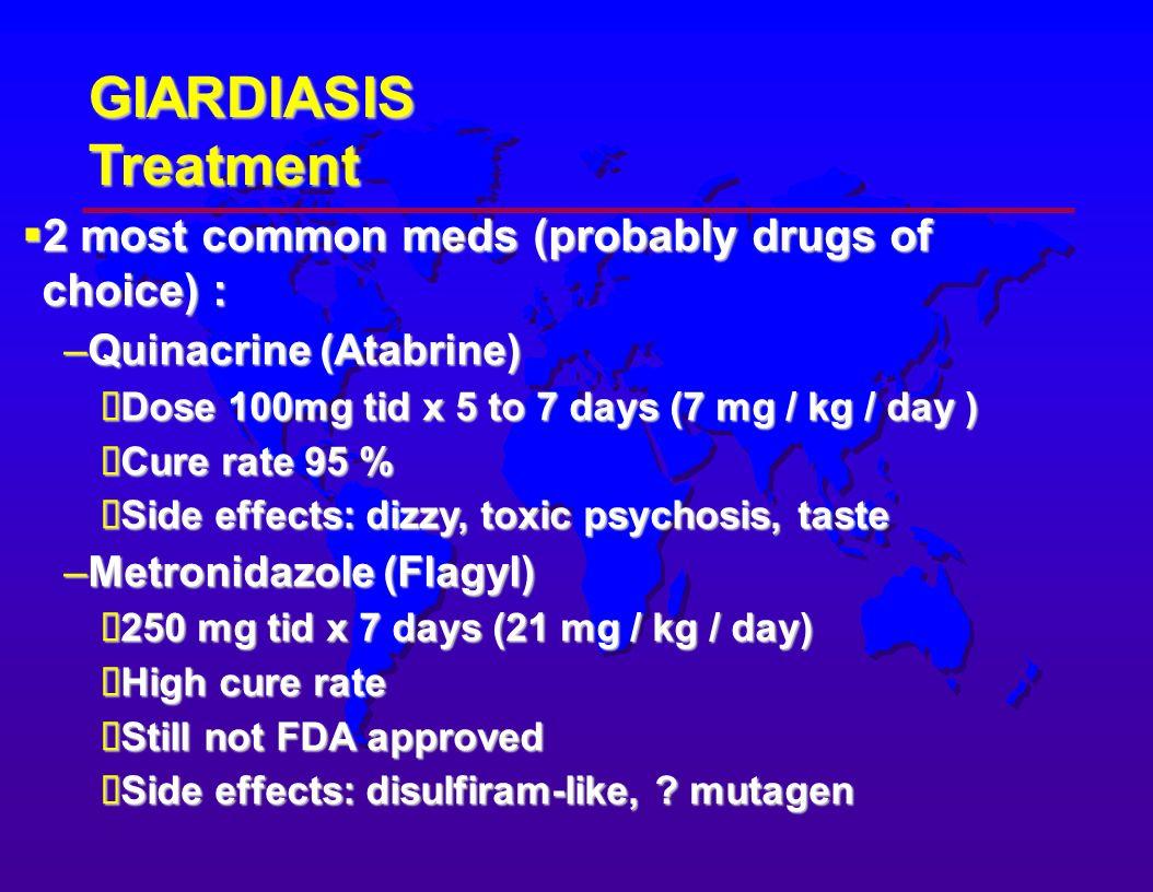 Giardia treatment in humans dosage. Giardia-fertőzés (giardiasis) A giardiasis morfológiája