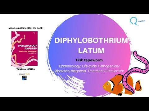 Diphyllobothriasis kezelési gyógyszerek GYÓGYSZERES KEZELÉS