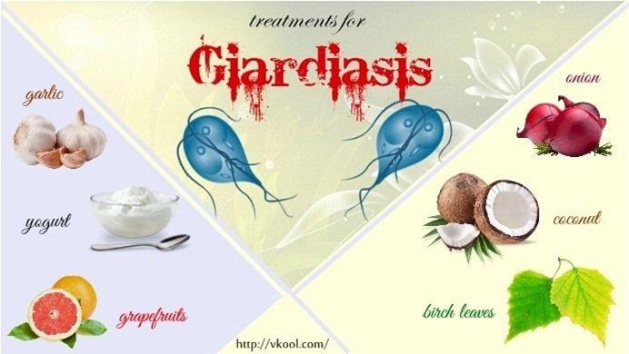 baktériumcsepp a paraziták összetételéből