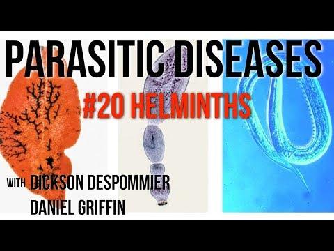 helminthiasis jelentése széles spektrumú anti helminth készítmények gyermekek számára