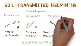 helminthiasis gyógynövényes kezelés