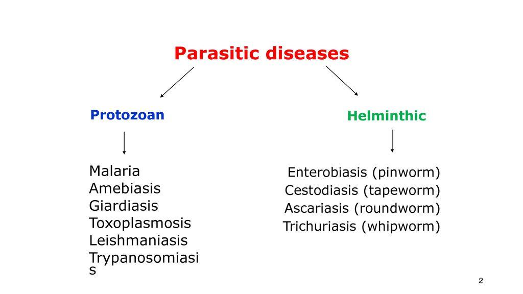 Giardia Ascaridosis malária