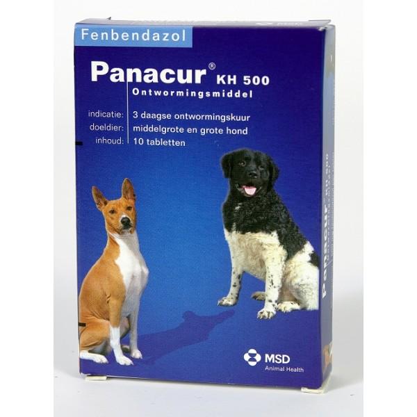 Giardia hond panacur, Behandeling giardia hond panacur