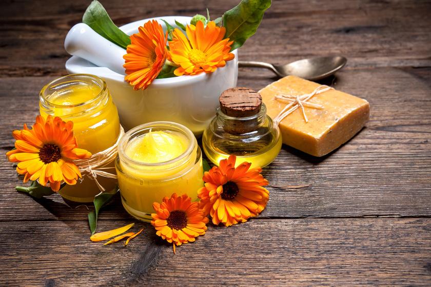 gyógynövények a parazitákból a bőr alatt gyomor bél kezelése emésztőrendszeri betegségek esetén