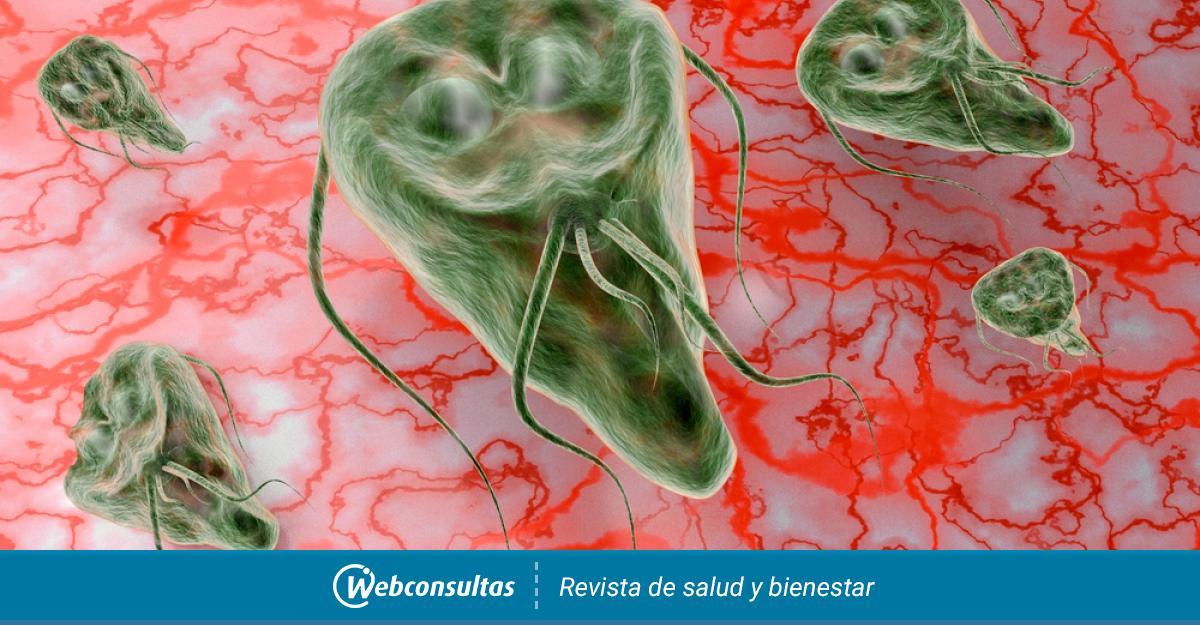 mi az anyag a giardiasis kutatására