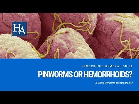 pinworm férgek kezelése felnőtteknél melyik állat a szarvasmarha szalagféreg köztes tulajdonosa